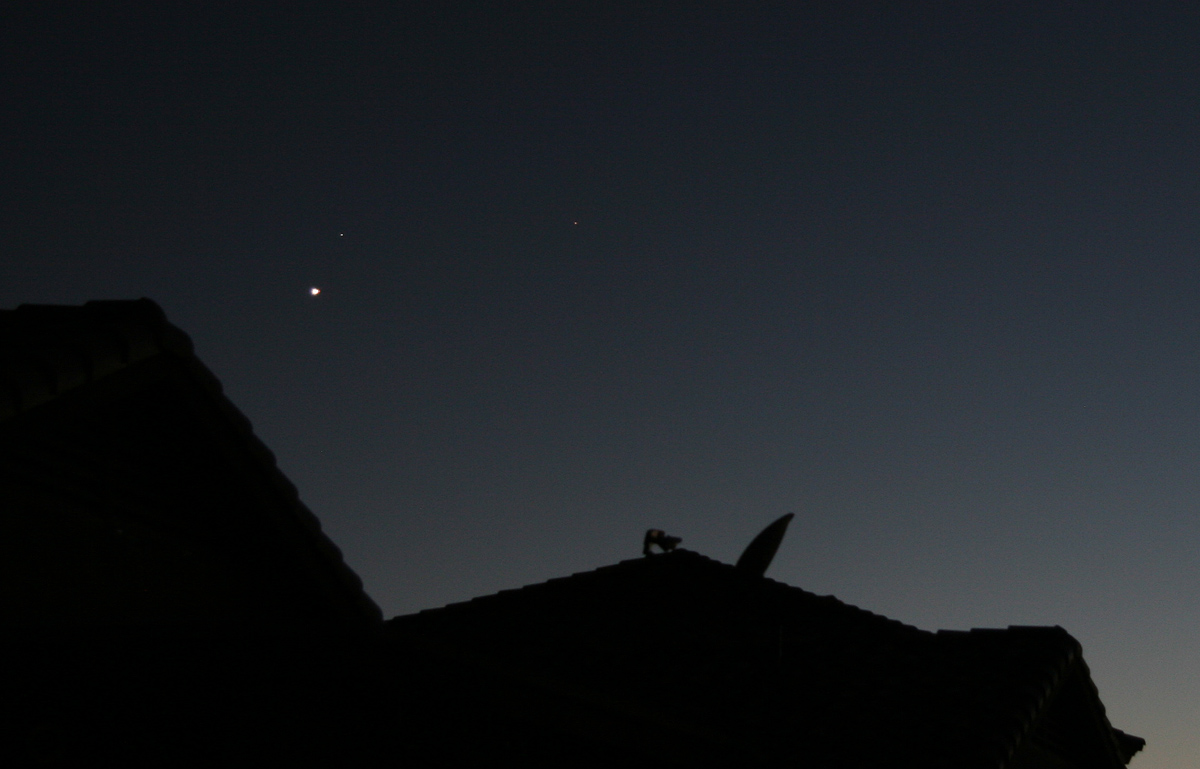 [Spica / Venus Conjunction and Mars on 31 August 2010]